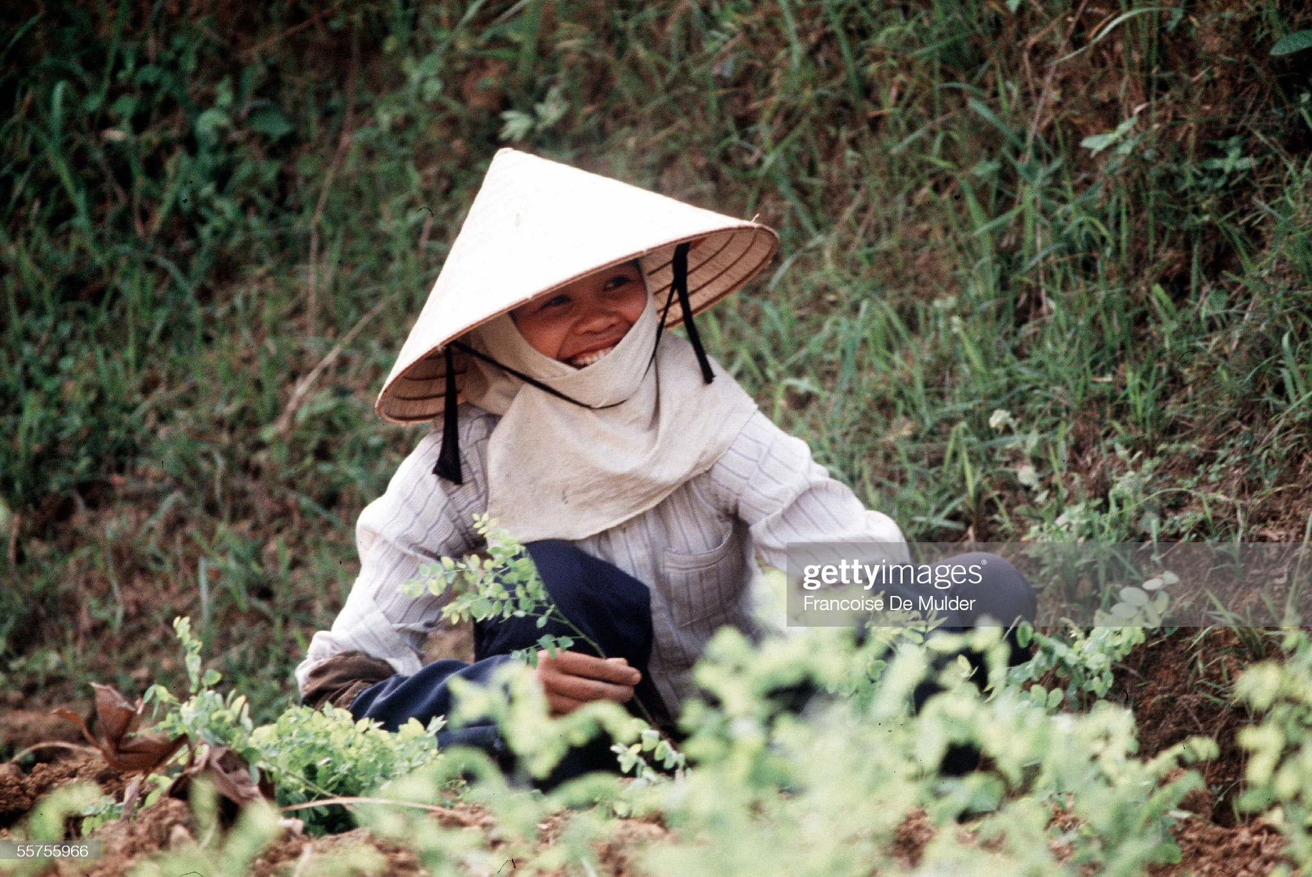 Boi hoi ngam cuoc song o thanh pho Vinh nam 1989-Hinh-8