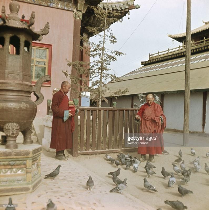 Cuoc song tam linh huyen bi o thu do Mong Co nam 1962-Hinh-9
