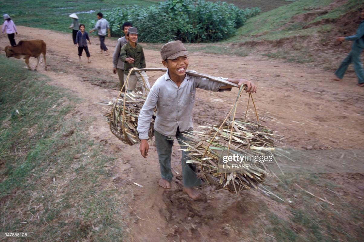 Khung canh thanh binh cua dong que Viet Nam nam 1987 (1)-Hinh-4