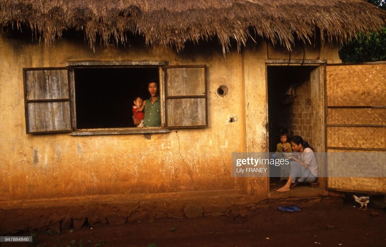 Khung canh thanh binh cua dong que Viet Nam nam 1987 (1)-Hinh-6
