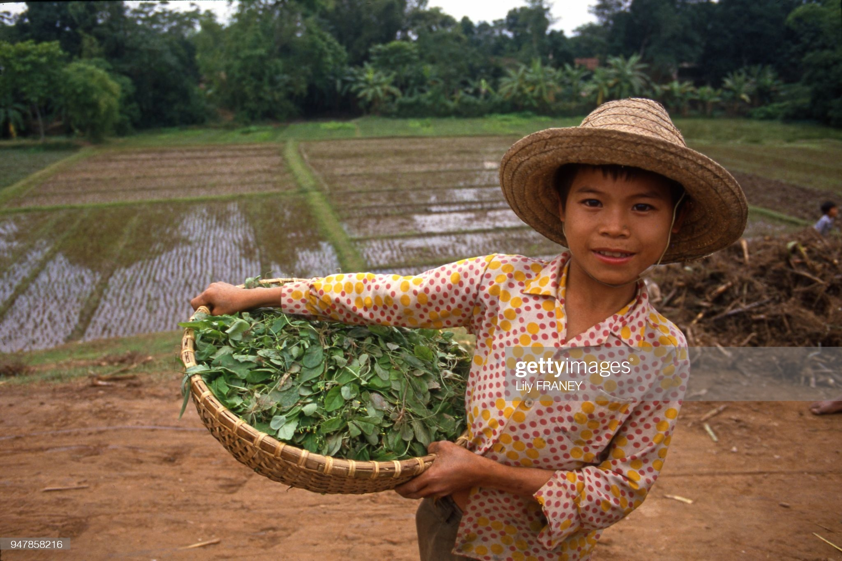 Khung canh thanh binh cua dong que Viet Nam nam 1987 (1)-Hinh-7