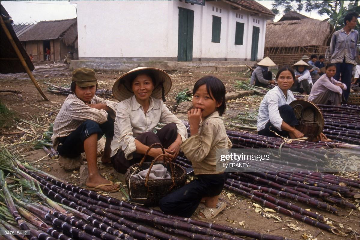 Khung canh thanh binh cua dong que Viet Nam nam 1987 (1)-Hinh-8
