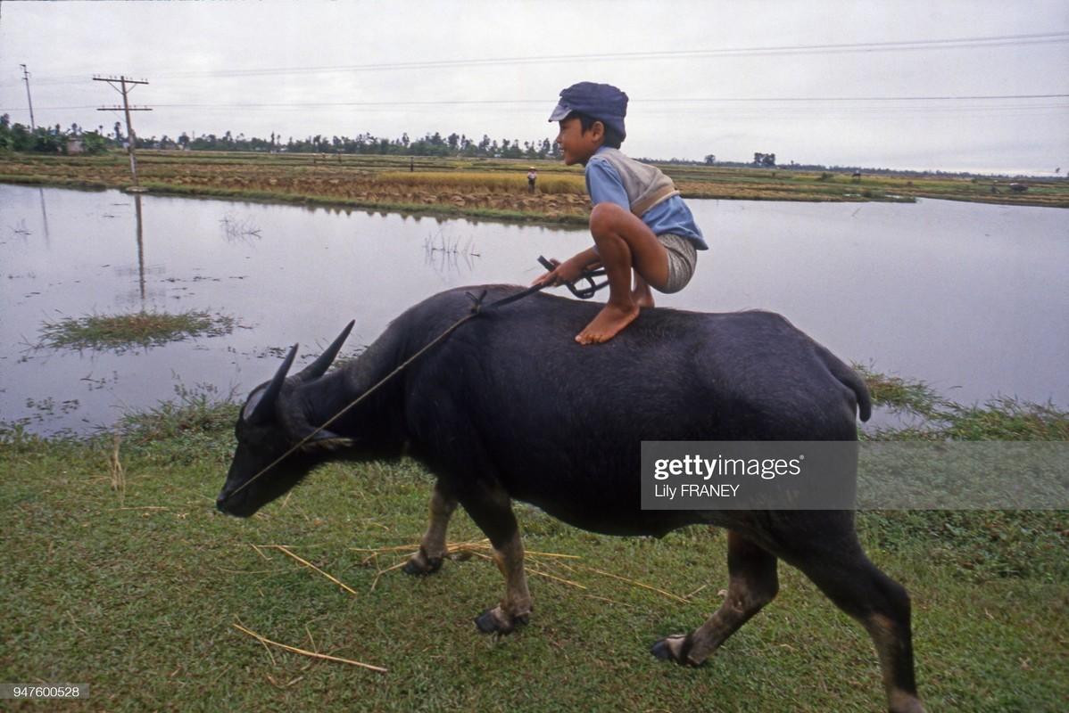 Khung canh thanh binh cua dong que Viet Nam nam 1987 (2)-Hinh-3
