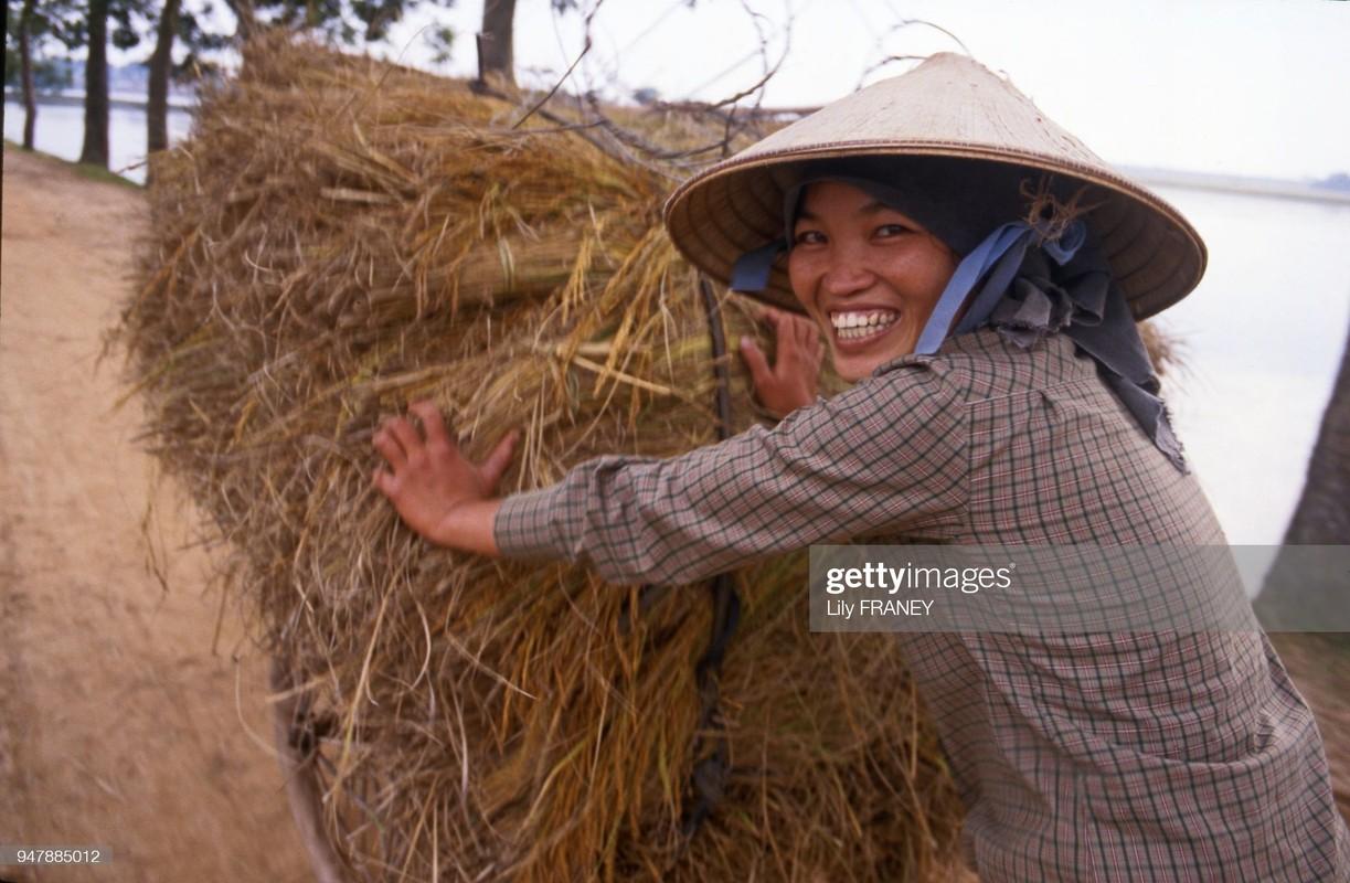 Khung canh thanh binh cua dong que Viet Nam nam 1987 (2)-Hinh-5