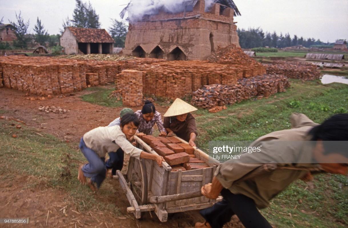 Khung canh thanh binh cua dong que Viet Nam nam 1987 (2)-Hinh-7