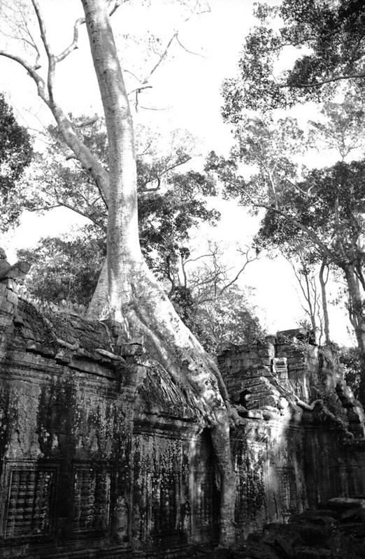 Anh hiem co kho tim ve phe tich Angkor thap nien 1930-Hinh-14