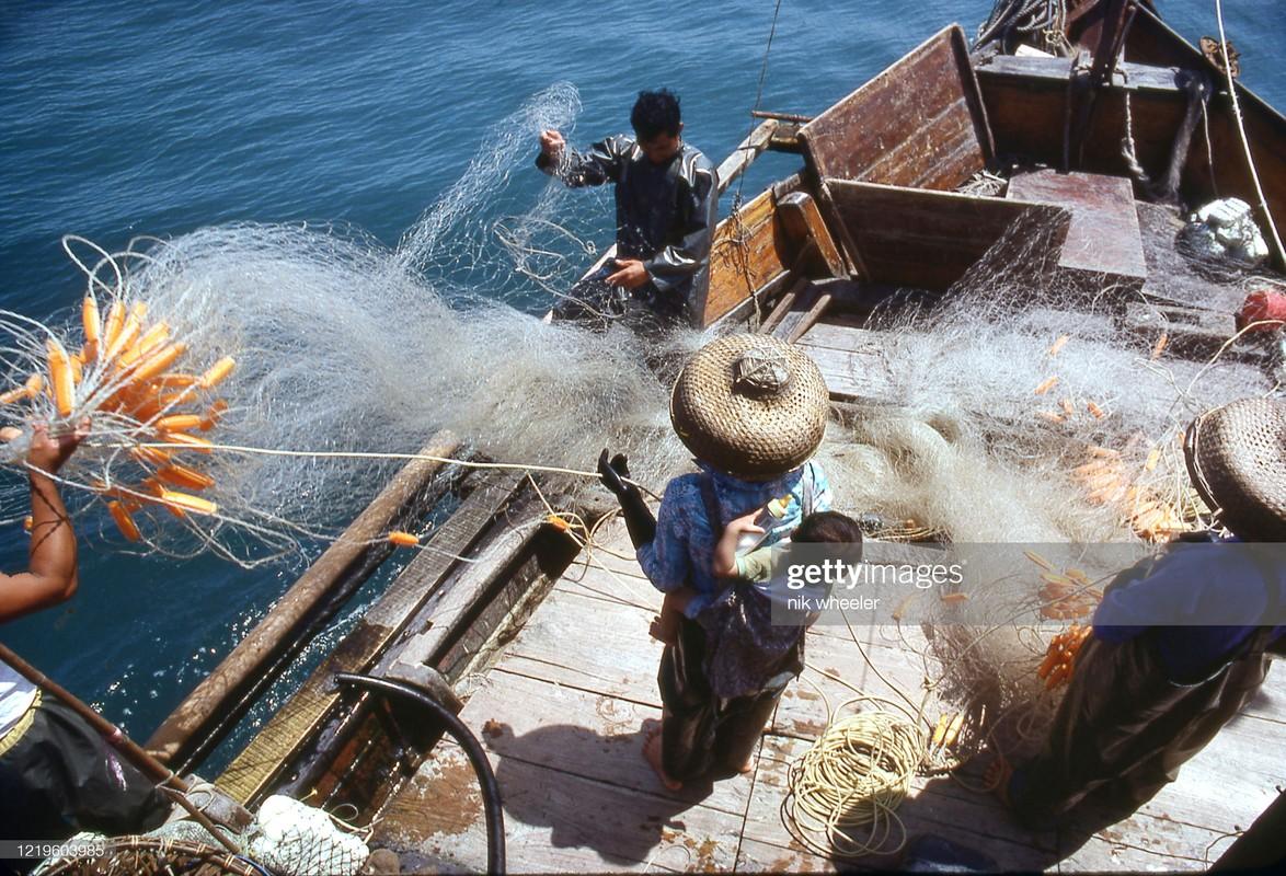 Anh doc ve cuoc song cua nguoi Hong Kong thap nien 1970-1980 (1)-Hinh-3
