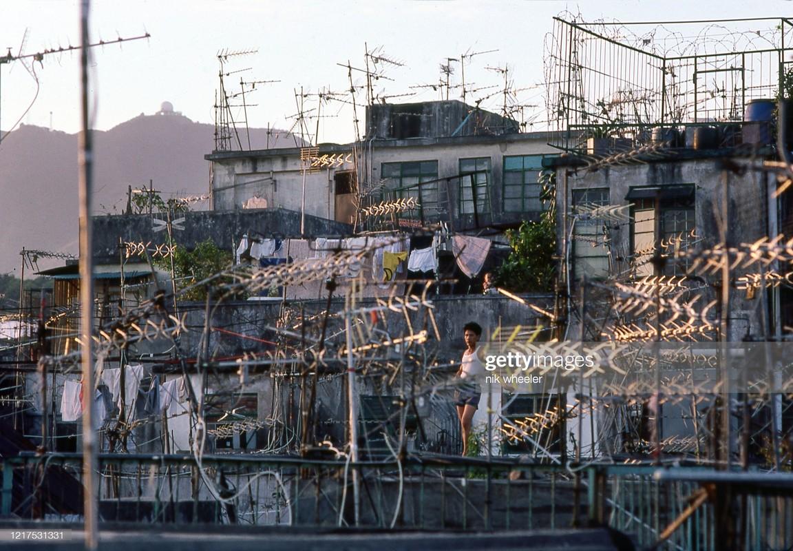 Anh doc ve cuoc song cua nguoi Hong Kong thap nien 1970-1980 (2)-Hinh-5