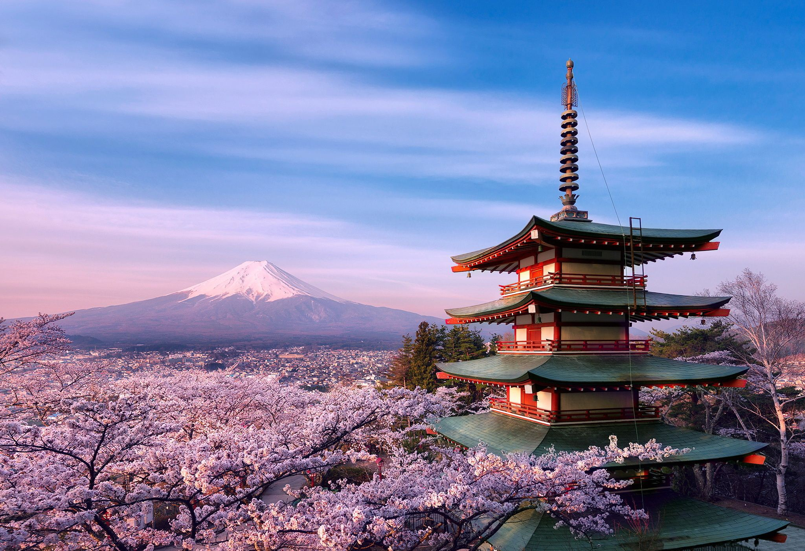 Vi sao nguoi Nhat Ban goi hoa anh dao la Sakura?-Hinh-3