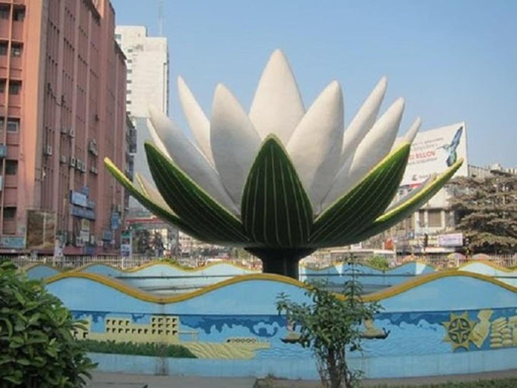 Hoa sung trang la bieu tuong cua nuoc nao?