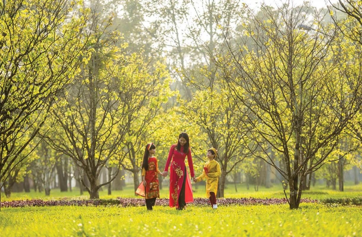 Nhung loai hoa bieu tuong o cac dia phuong-Hinh-4