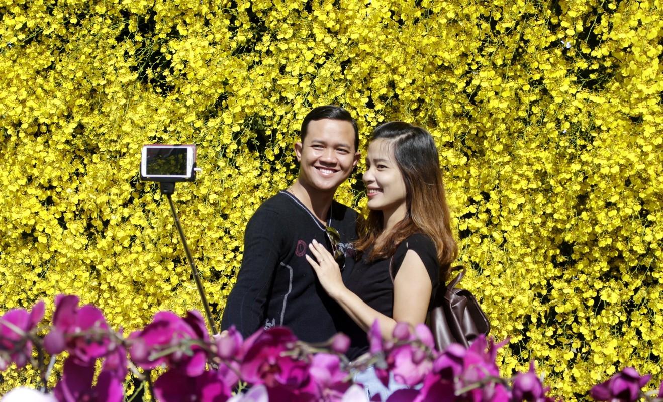 Nhung loai hoa bieu tuong o cac dia phuong-Hinh-7