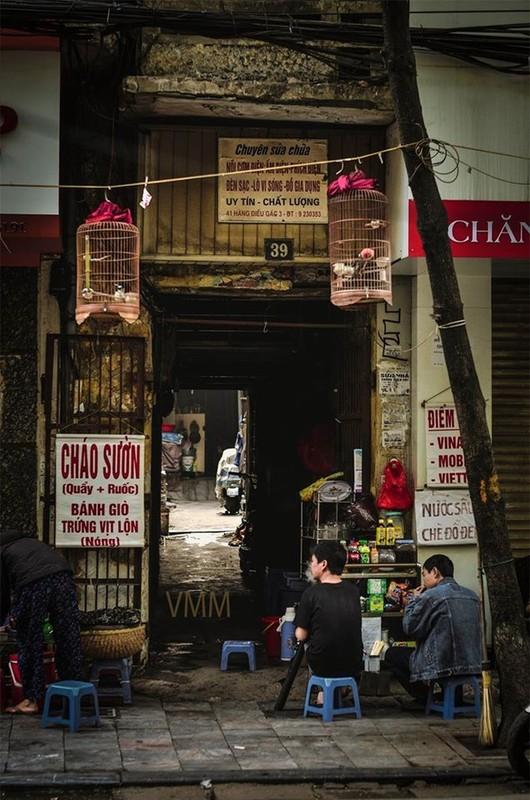 Bo anh cuc chat ve Ha Noi binh yen khien nguoi xem nao long-Hinh-3
