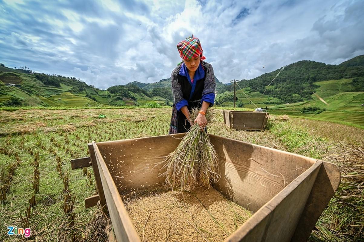 Kham pha ruong bac thang Mu Cang Chai dep me hon-Hinh-4