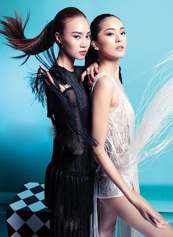 My nhan showbiz Viet lien tuc bi bat loi photoshop qua da-Hinh-8
