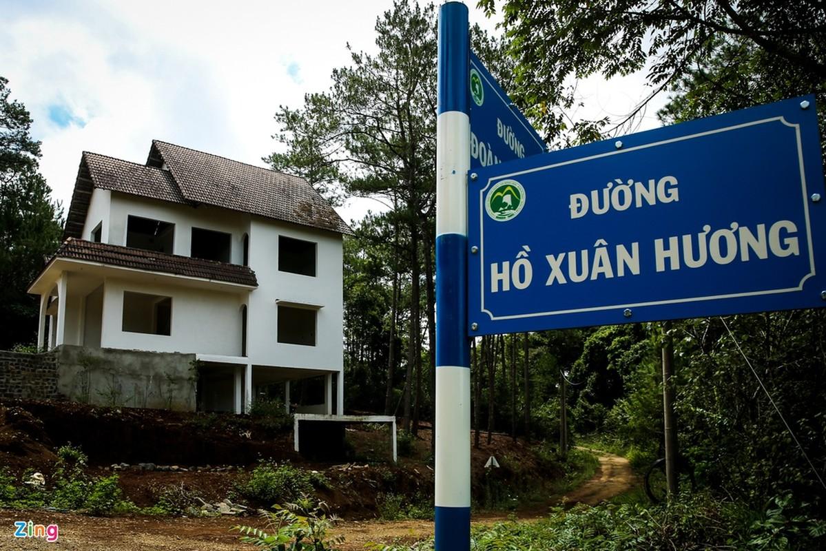 'Da Lat thu 2' hoang vang voi hang tram biet thu bo khong-Hinh-4