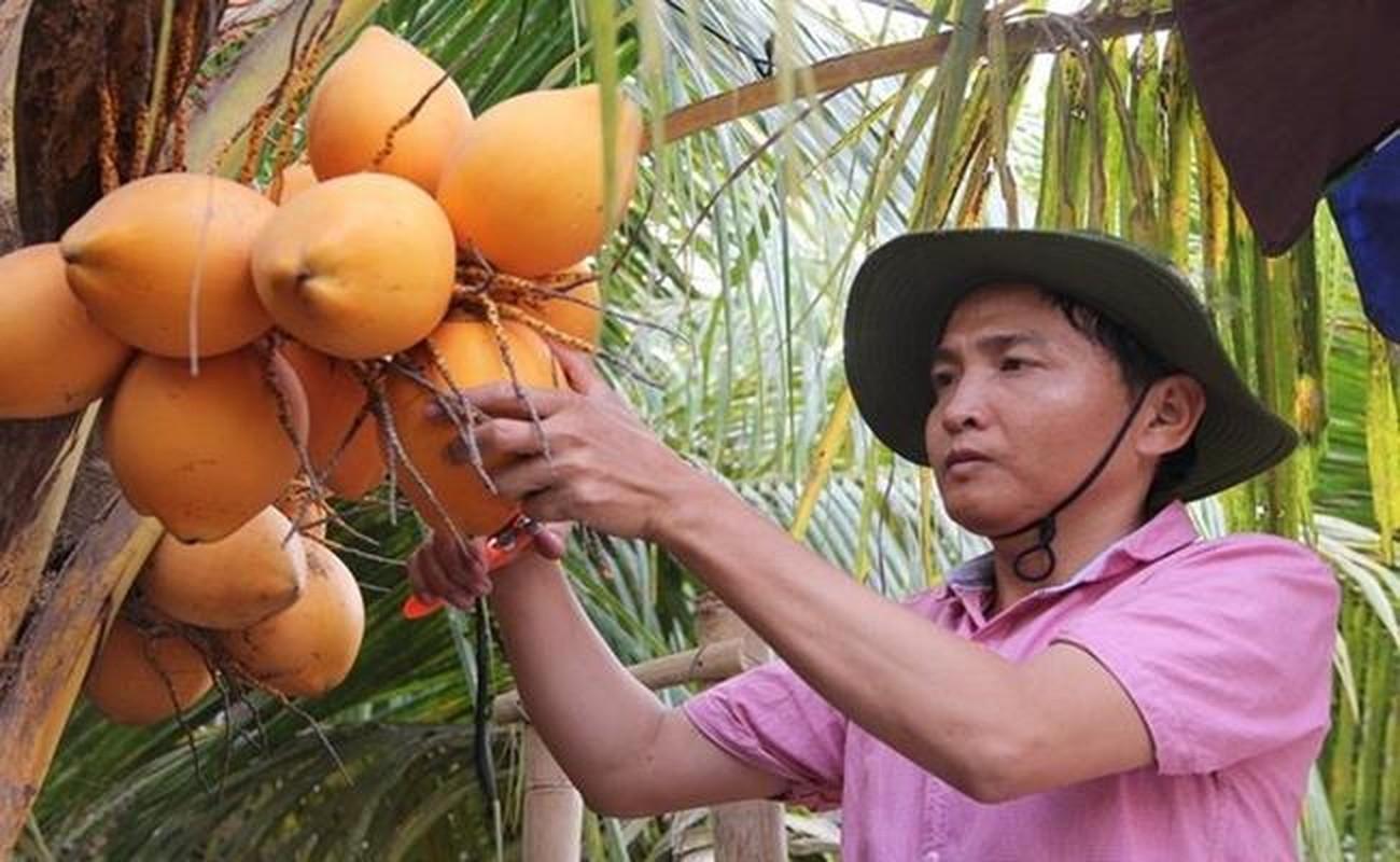 Nhung loai qua ky la chua chac nguoi Viet da biet-Hinh-21