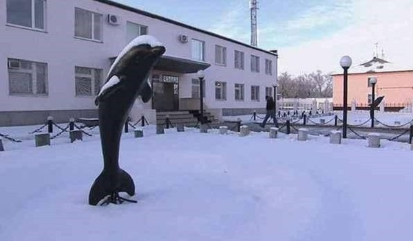 Nha tu Black Dolphin: Noi giam giu nhung ke tan bao nhat
