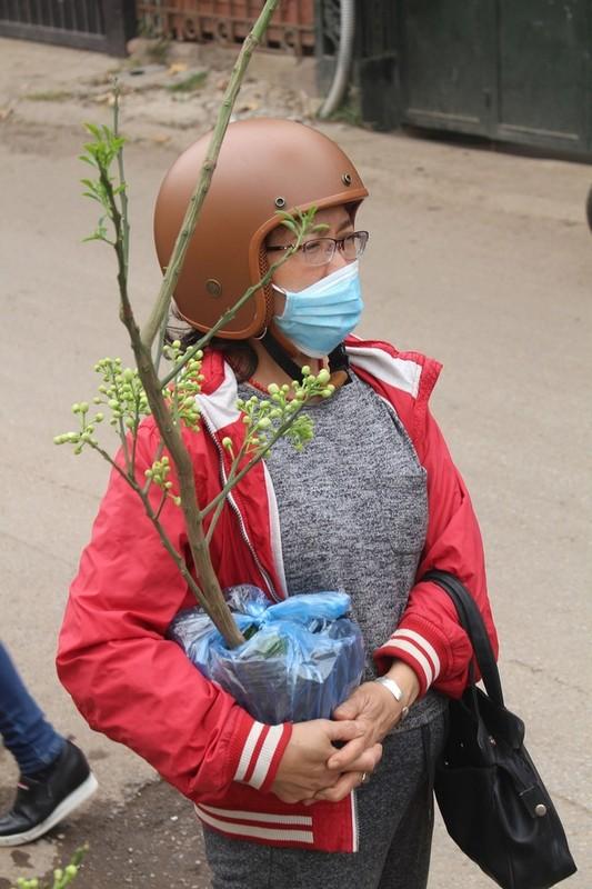 Dan Ha thanh vung tien lay ca cay lan chau hoa buoi-Hinh-8