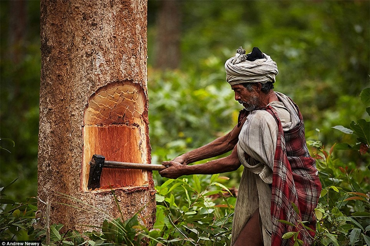 Cuoc song cua bo toc san bat cuoi cung o Nepal o the ki 21-Hinh-2