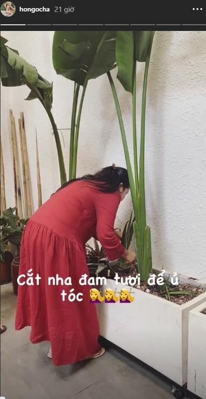 Hoc Ho Ngoc Ha u toc voi nguyen lieu re tien lai cham toc dep-Hinh-8