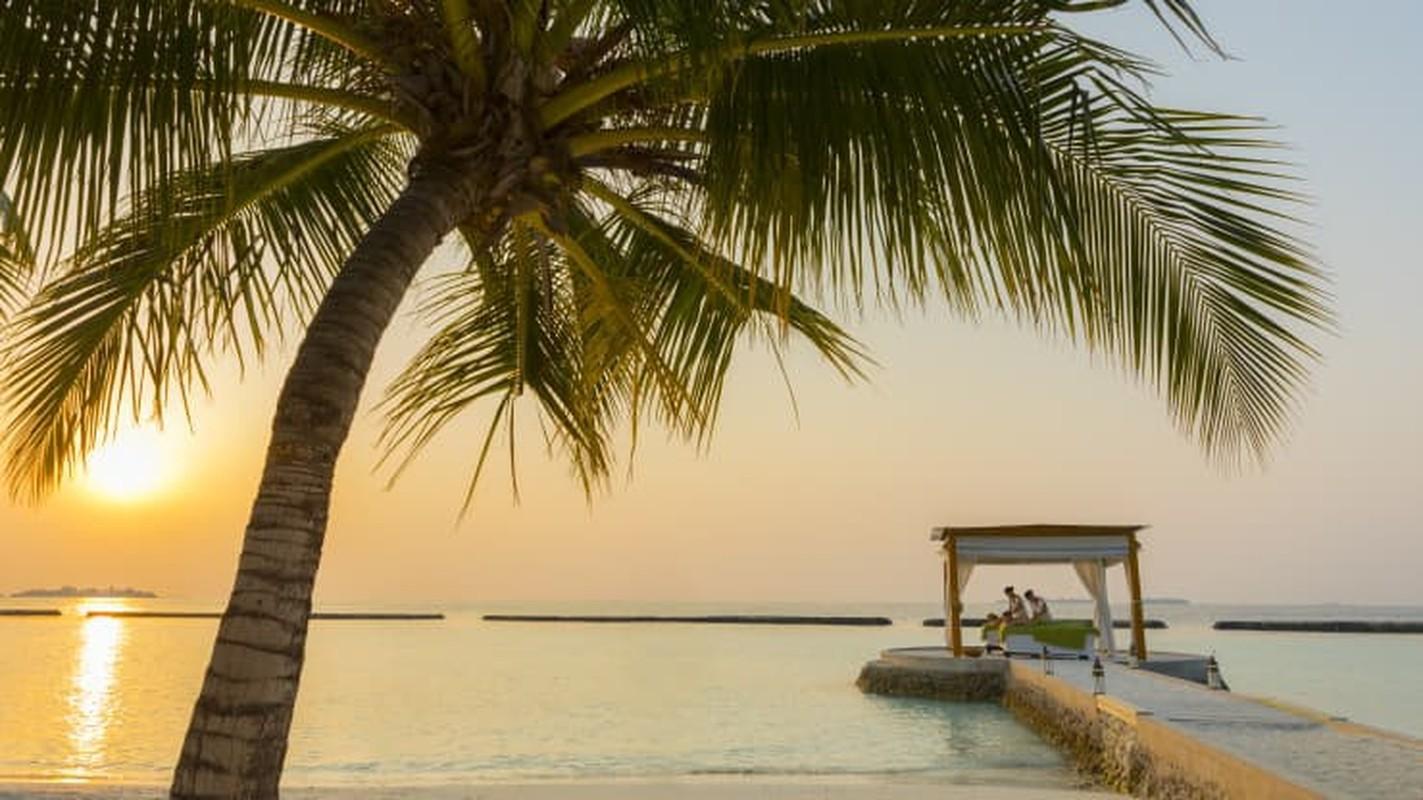 Du lich gian cach o Maldives - tu nha to chim den leu bong bong-Hinh-6