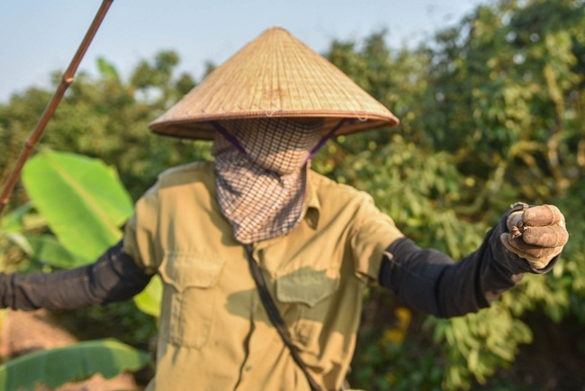 Bat cay ve ban kiem tien trieu de nhu choi-Hinh-5