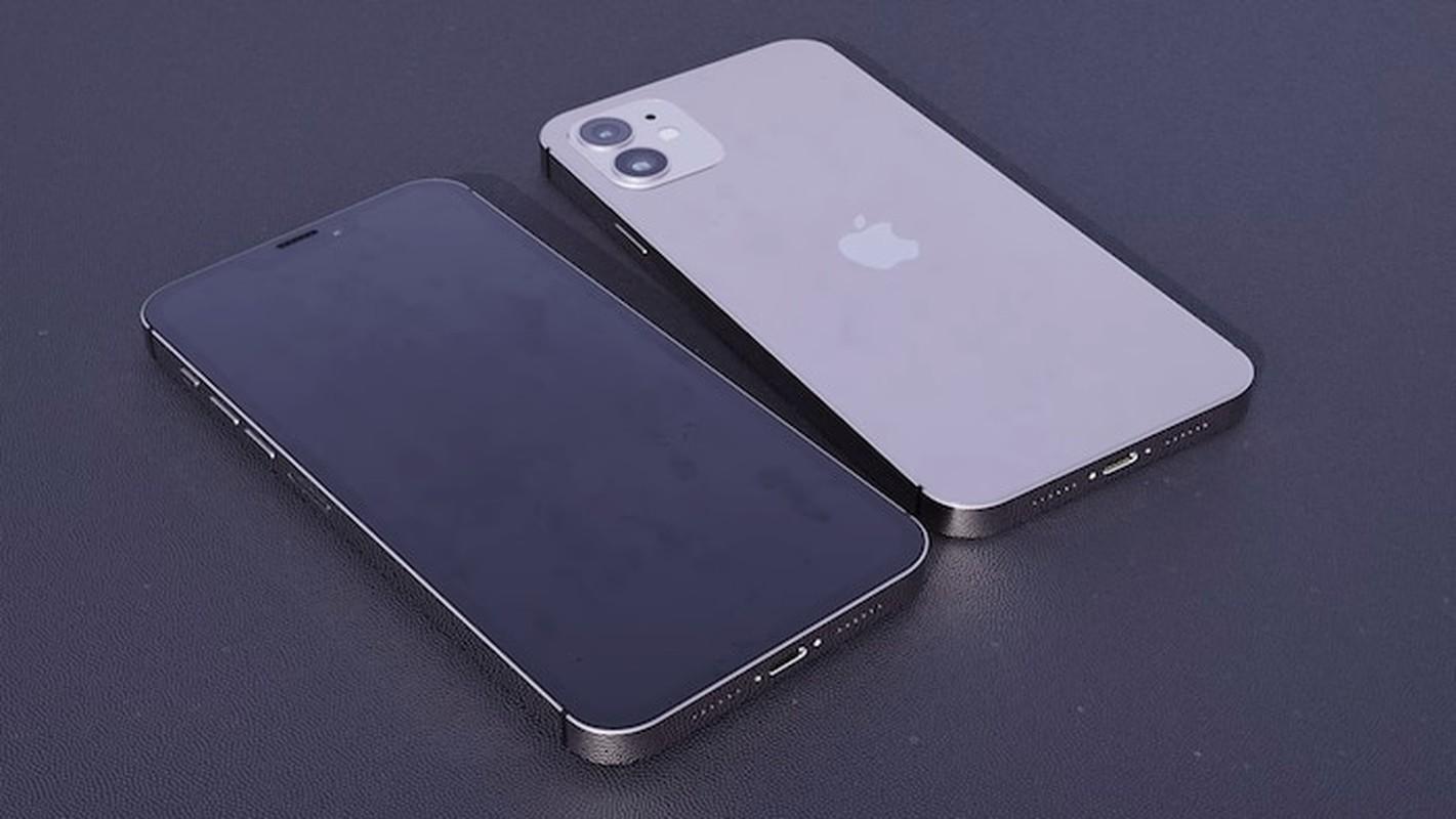 Ngo ngang voi thiet ke tuyet dep cua iPhone 12: Vuong van, nho gon-Hinh-17