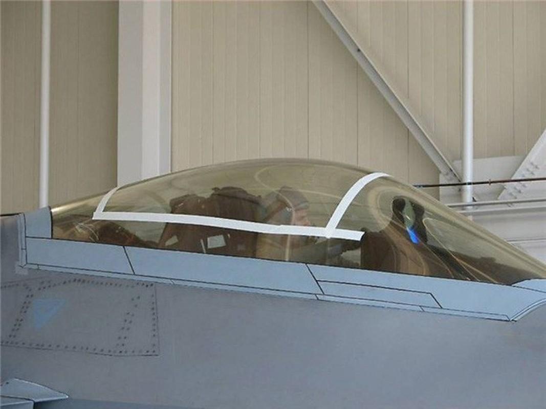 Phi cong F-22 My mac ket 5 gio trong buong lai sau tai nan-Hinh-4