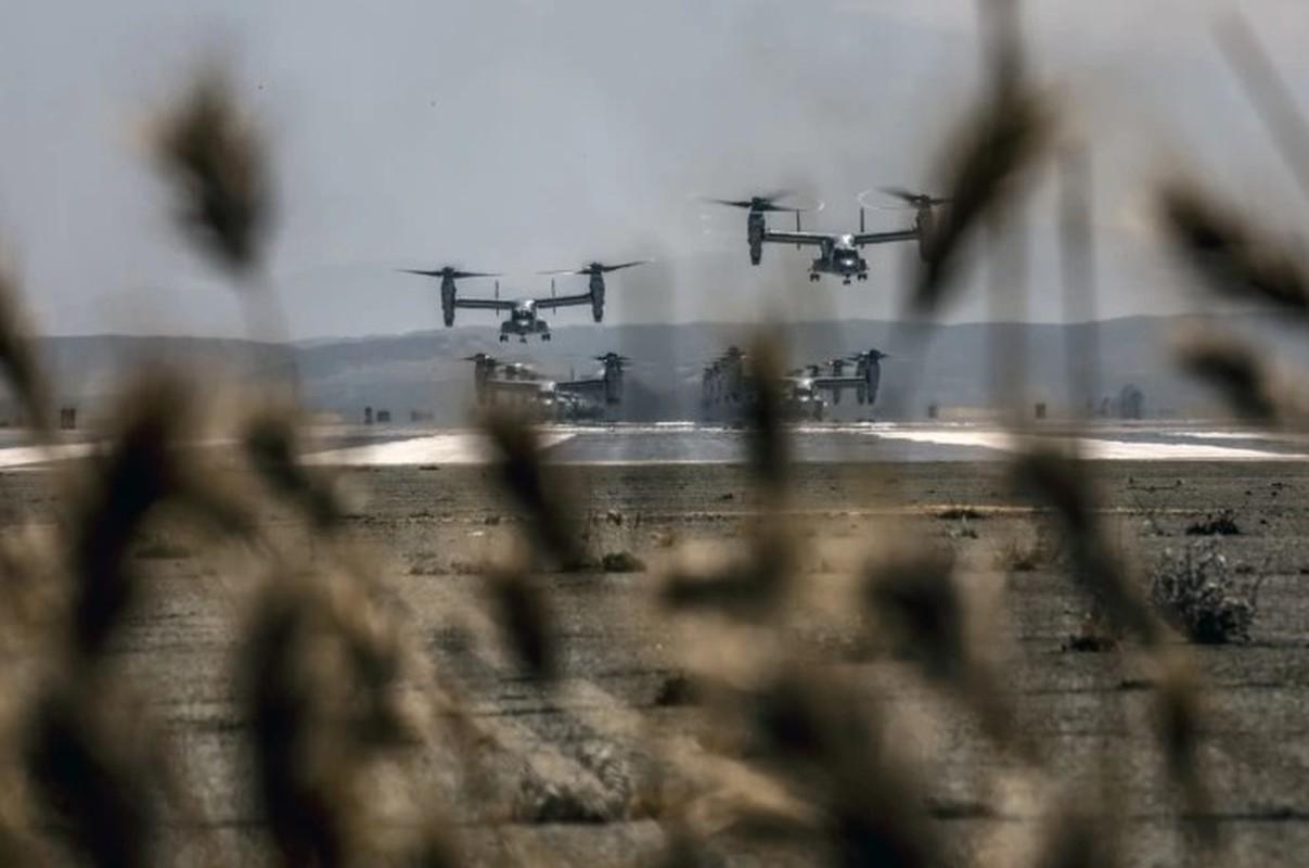 Truc thang lai sieu di V-22 Osprey xuat hien trong chien dich tieu diet Baghdadi?-Hinh-7