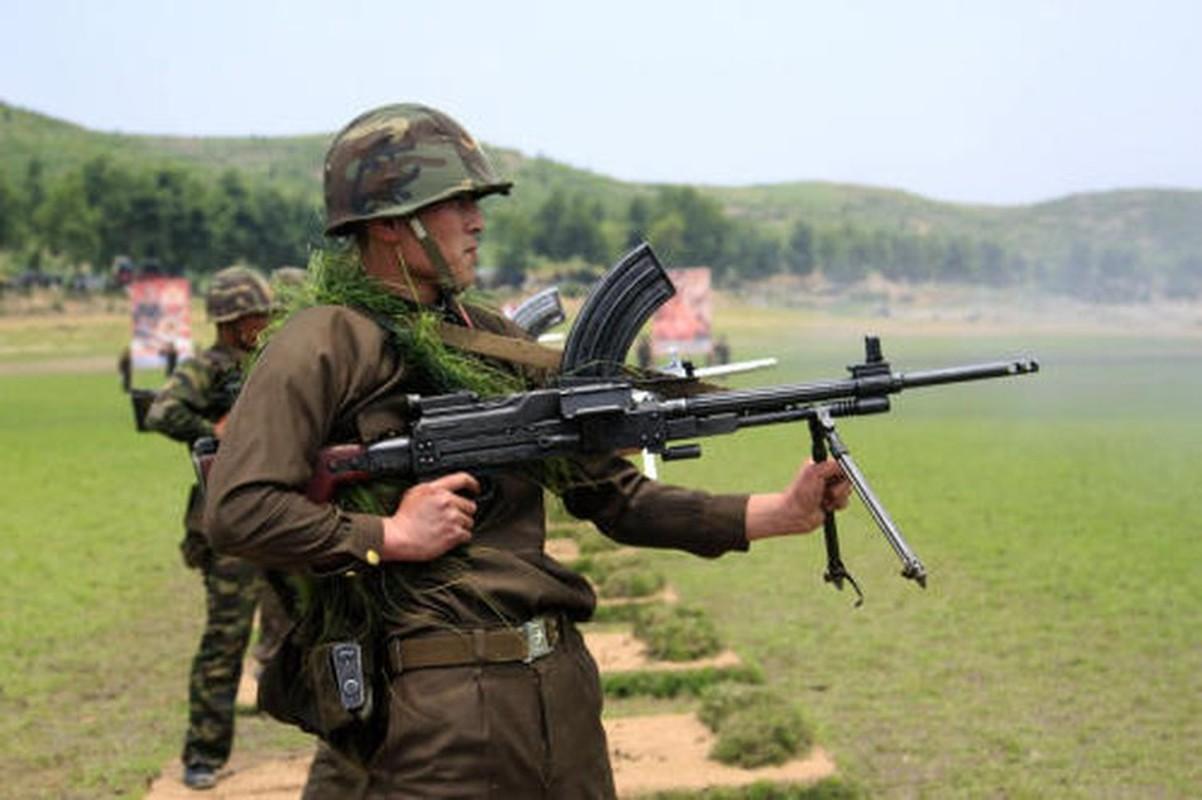 Kieu dang ky la cua khau sung may bieu tuong suc manh bo binh Trieu Tien-Hinh-9