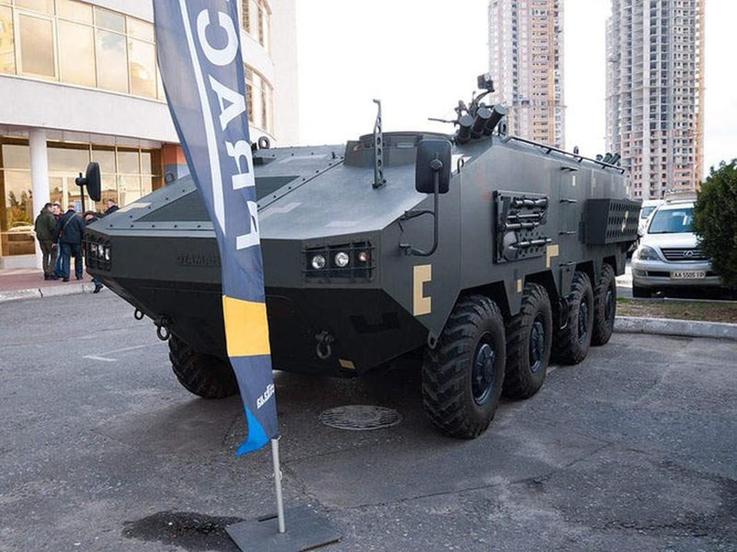 Quay lung hoan toan voi Nga, Ukraine trinh lang xe thiet giap chuan NATO-Hinh-13