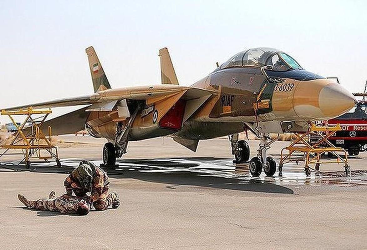 Tiem kich F-14 Tomcat Iran tang suc manh nho Nga va Trung Quoc-Hinh-6