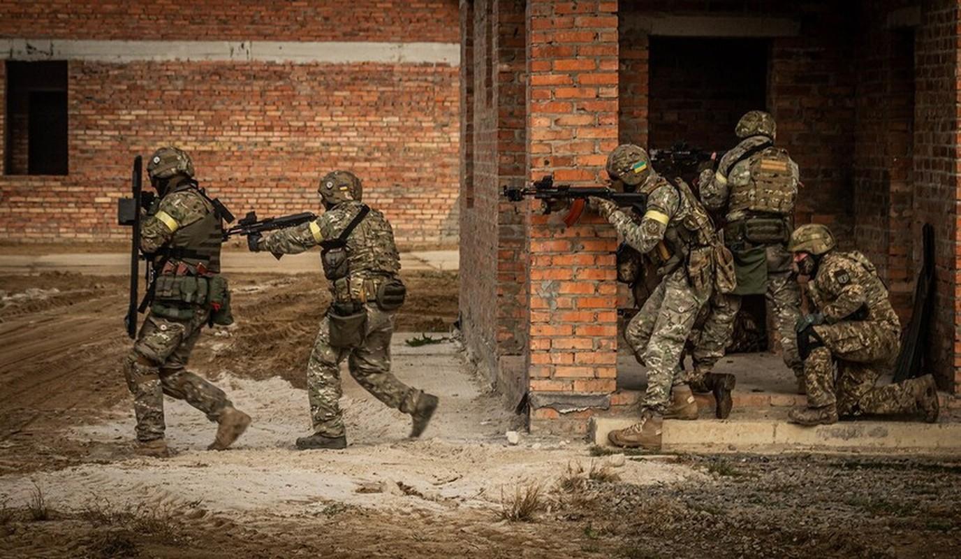 Quan doi Ukraine bat ngo nhung tay vao chien su Armenia - Azerbaijan-Hinh-5