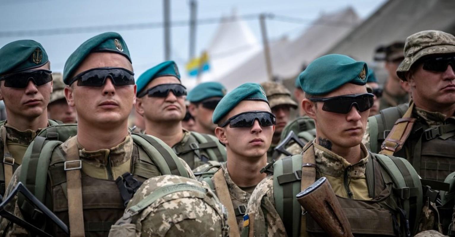 Quan doi Ukraine bat ngo nhung tay vao chien su Armenia - Azerbaijan-Hinh-6