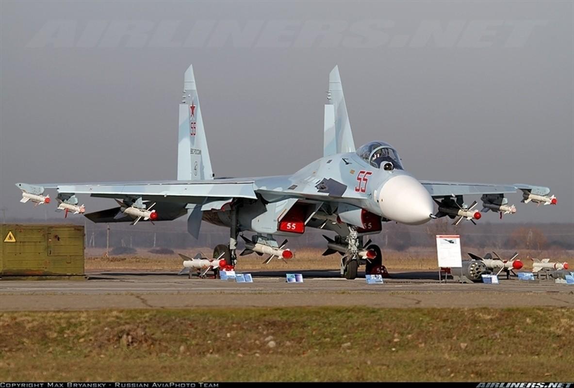 He lo nguyen nhan tiem kich Su-27SM3 cua Nga roi tai Crimea-Hinh-4