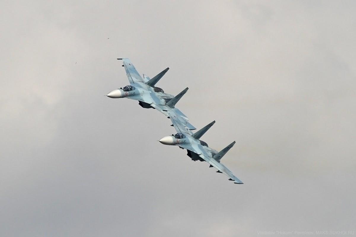 He lo nguyen nhan tiem kich Su-27SM3 cua Nga roi tai Crimea-Hinh-7