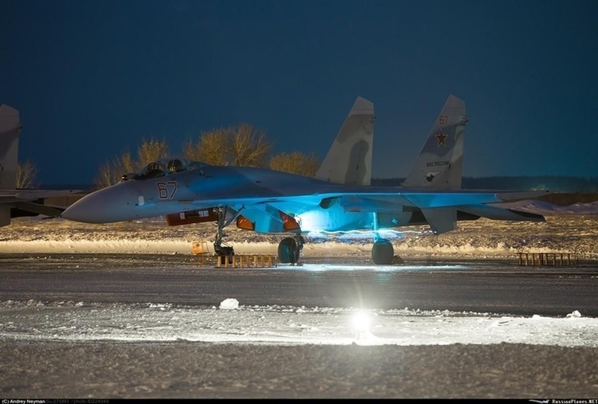 He lo nguyen nhan tiem kich Su-27SM3 cua Nga roi tai Crimea-Hinh-8