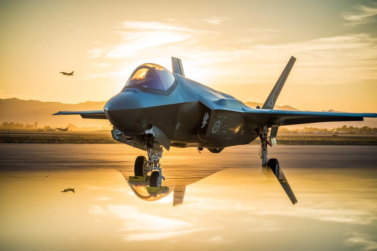 Tiem kich F-35A huy dien tap vi so set, vi sao Nga cuoi tham?-Hinh-12