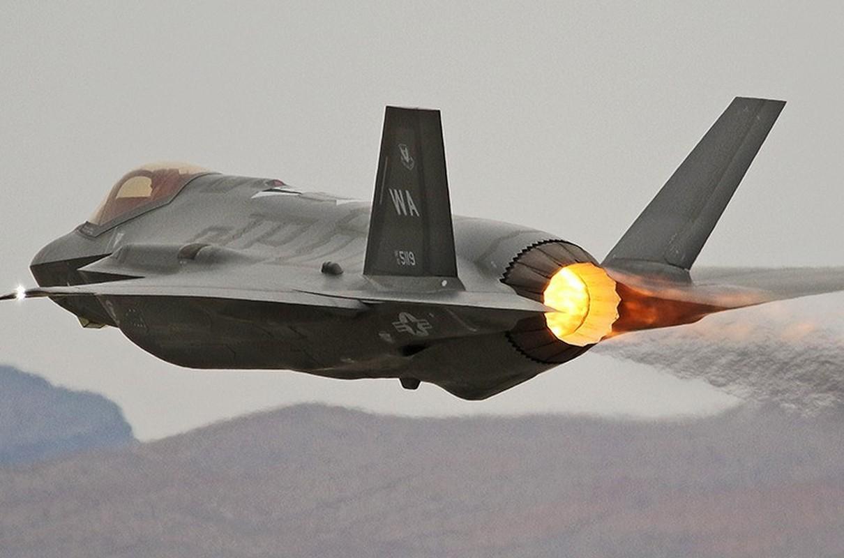 Tiem kich F-35A huy dien tap vi so set, vi sao Nga cuoi tham?-Hinh-13