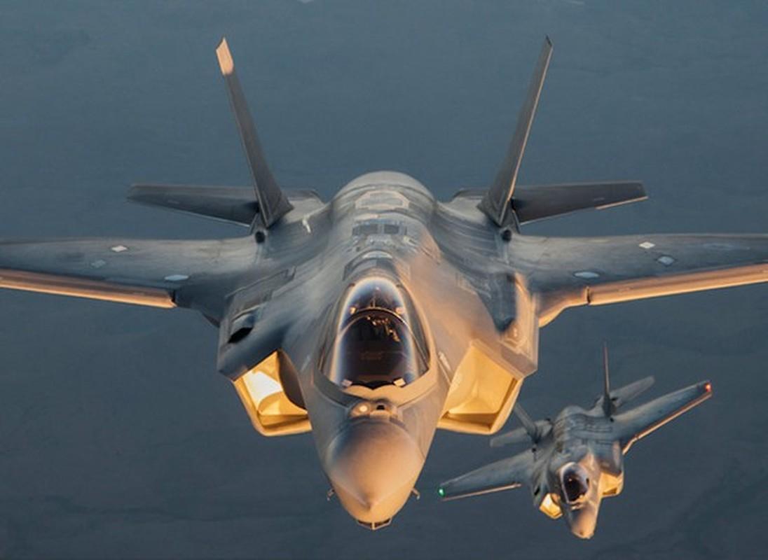 Tiem kich F-35A huy dien tap vi so set, vi sao Nga cuoi tham?-Hinh-18
