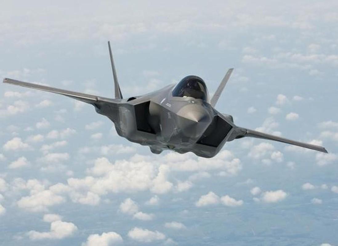 Tiem kich F-35A huy dien tap vi so set, vi sao Nga cuoi tham?-Hinh-6