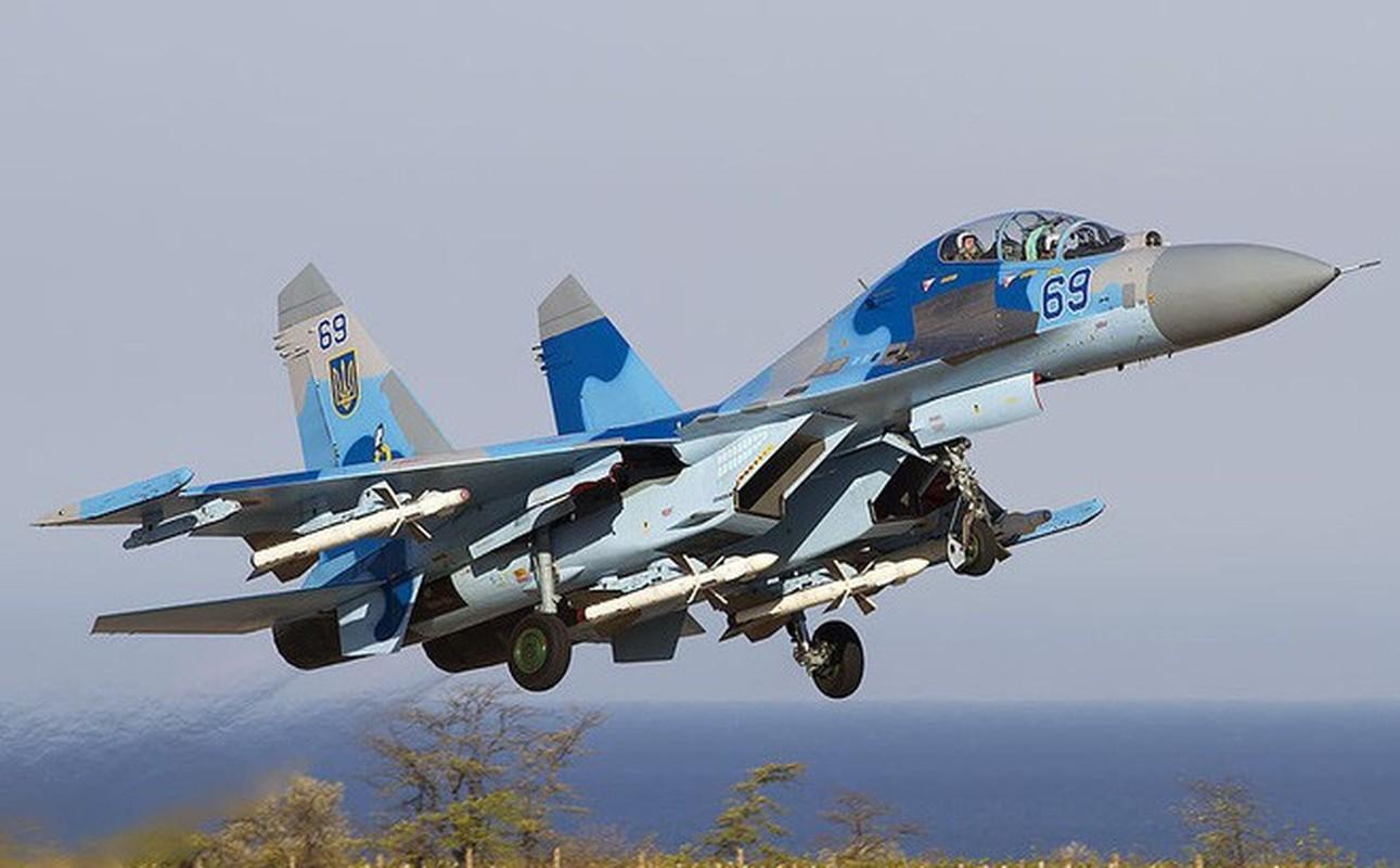 Phi cong Su-27 Ukraine tung suyt ban roi Il-20 cua Nga nhu the nao?-Hinh-9