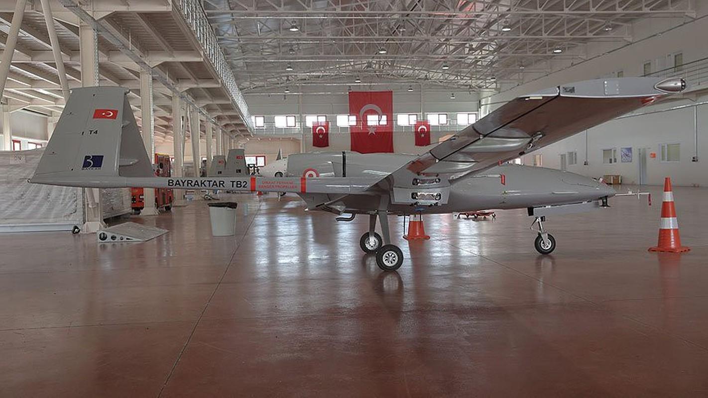 Dong minh cua Nga mua UAV TB2 Tho Nhi Ky: Chieu bai cao tay?-Hinh-2