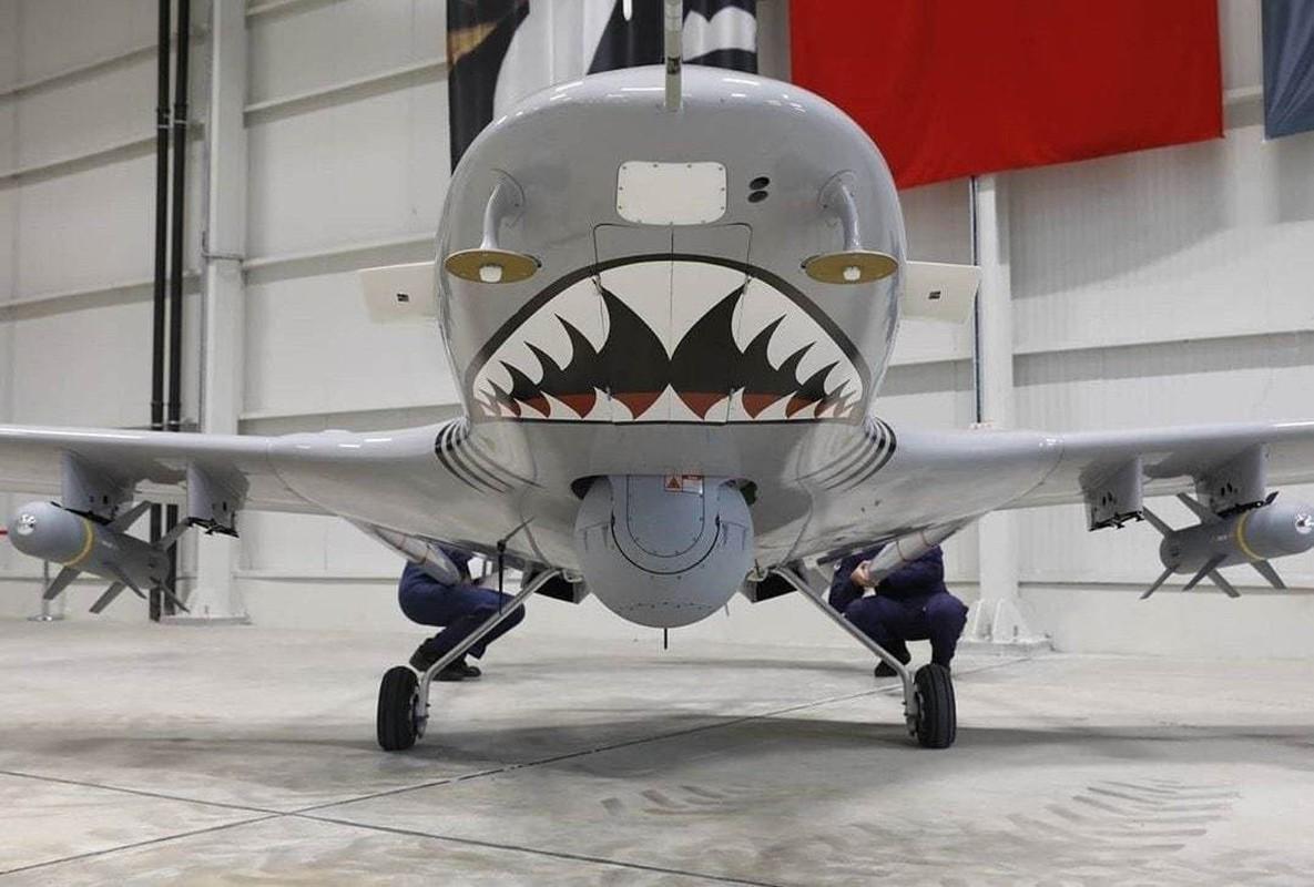Dong minh cua Nga mua UAV TB2 Tho Nhi Ky: Chieu bai cao tay?-Hinh-4