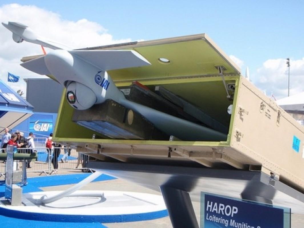Israel tim ra bi quyet danh bai Krasukha-4 Nga bang UAV cam tu?-Hinh-8