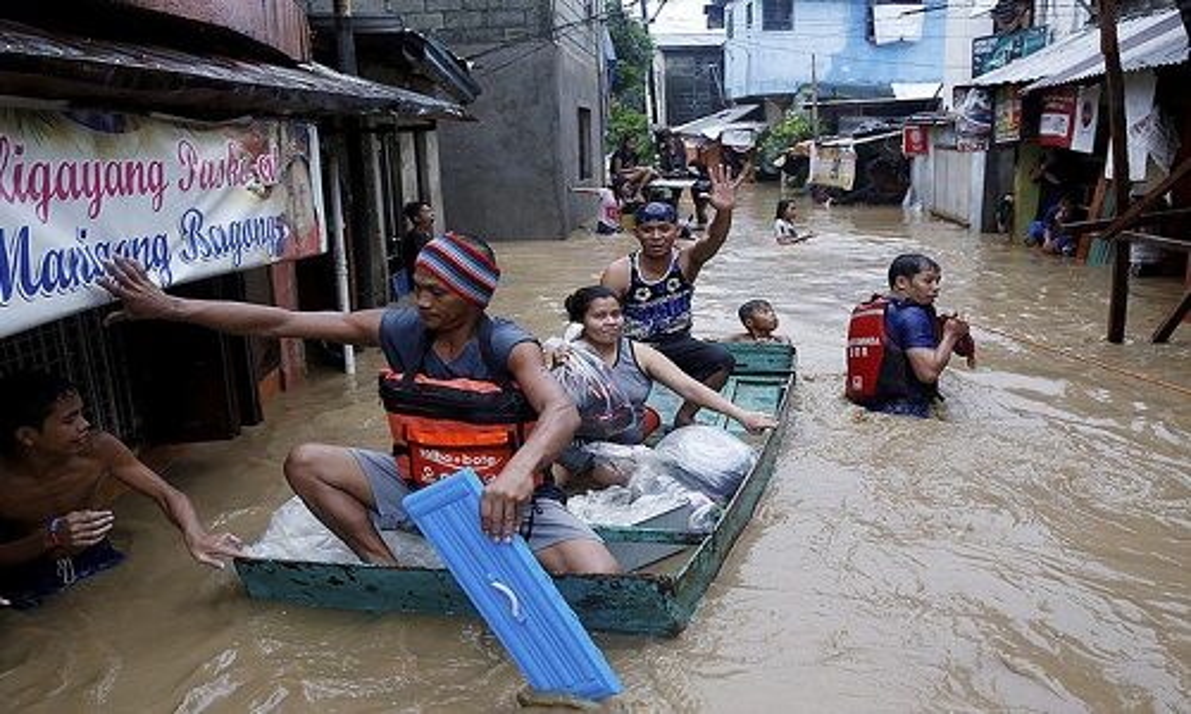 Canh dan chung Philippines khon kho trong mua mua-Hinh-10