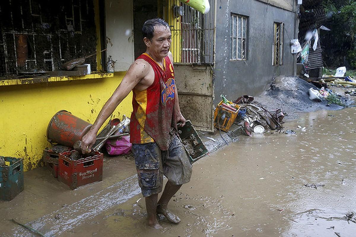 Canh dan chung Philippines khon kho trong mua mua-Hinh-3