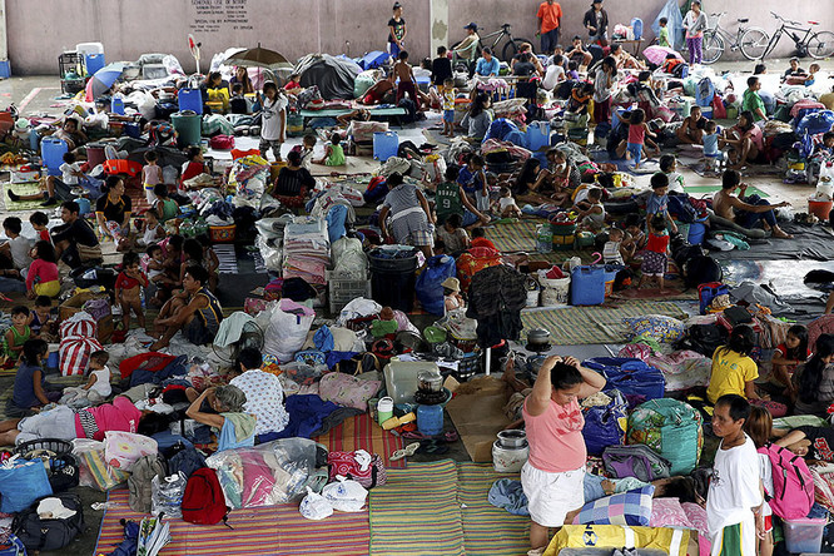 Canh dan chung Philippines khon kho trong mua mua-Hinh-4