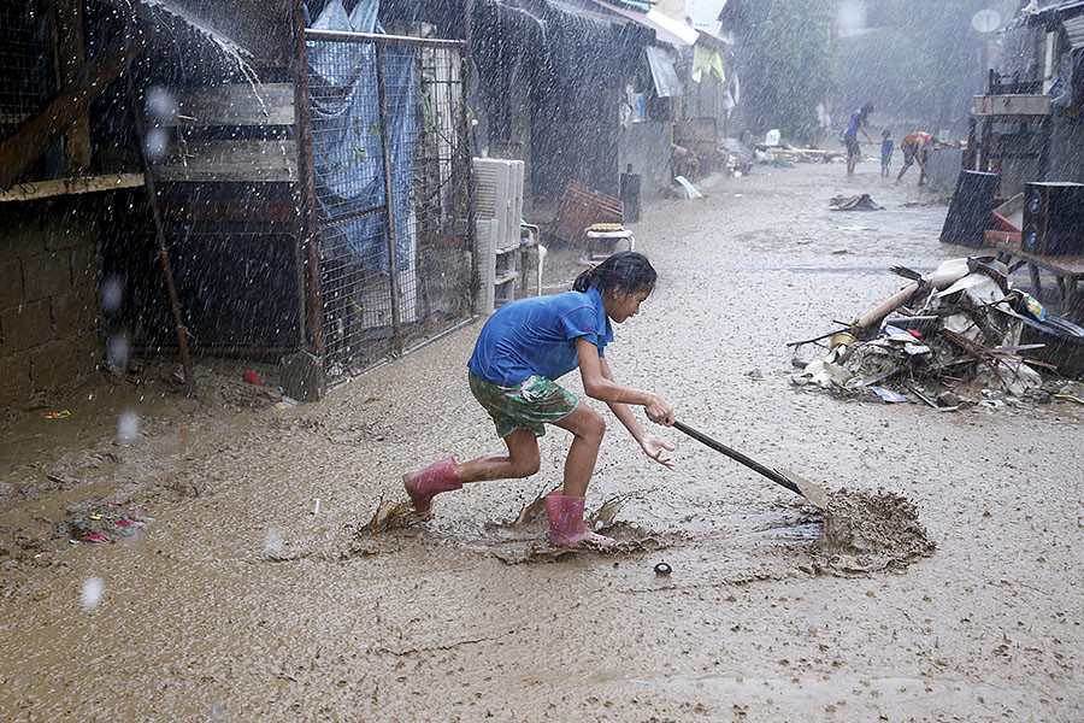 Canh dan chung Philippines khon kho trong mua mua